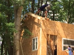 Tree House Progress 3