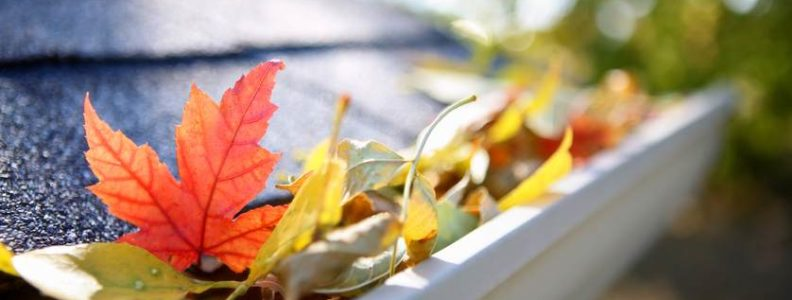 Fall guide to gutters